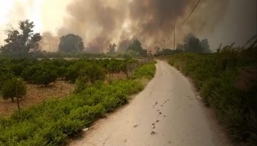 السيطرة على حريق امتد من غربي نهر الأردن إلى الباقورة